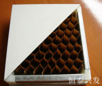 新疆纸蜂窝净化板