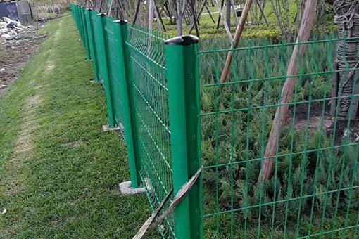 桃形柱圍網