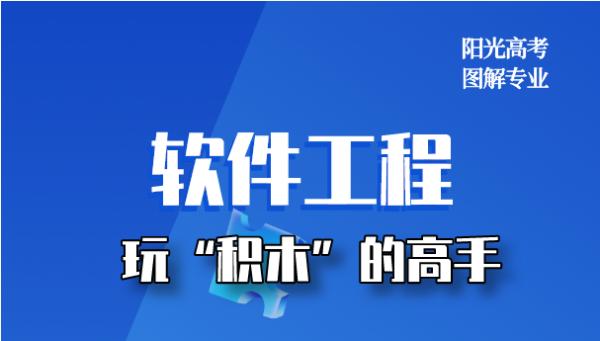 """【圖解專業】軟件工程:玩""""積木""""的高手"""