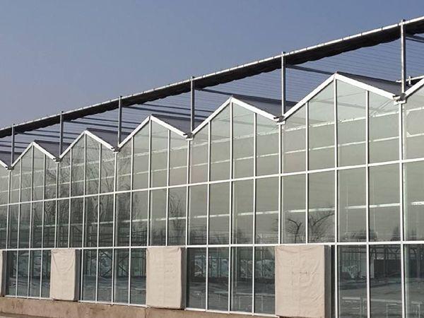 优质智能玻璃温室