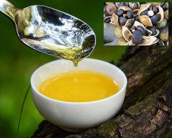 了解注射用茶油的精煉工藝