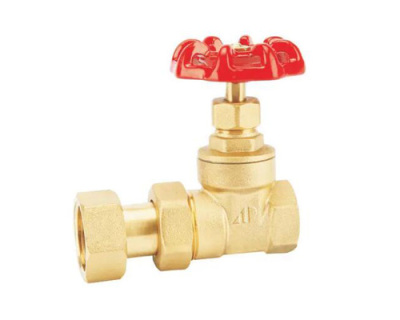黃銅活接閘閥